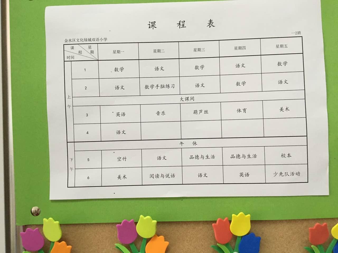 郑州市小学绿城文化小学国际v小学(2)信息树人学校图片