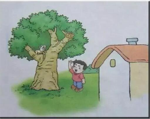 小学二年级看图作文范文:《大树》