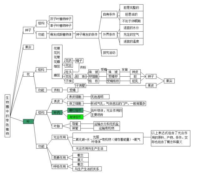 2018中考生物知识点结构图分类整理:生物圈中的绿色植物