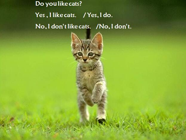 沪教牛津版小学三年级下册英语课件:《Animals I like》
