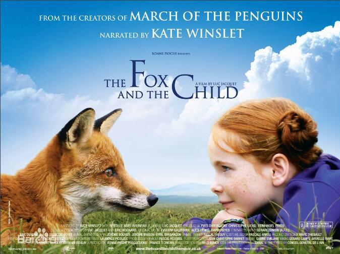 2017优秀小学生电影推荐:《狐狸与孩子》