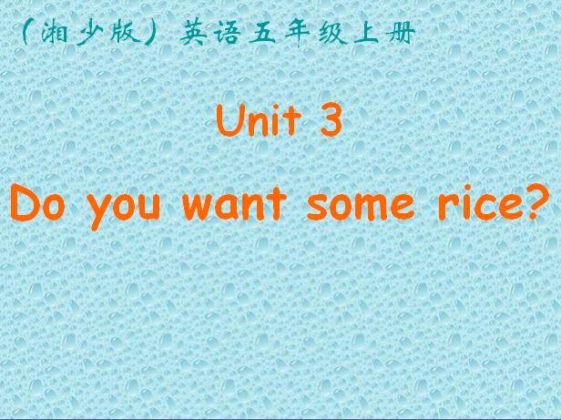 湘少版小学五年级上册英语课件:《Do you want some rice》