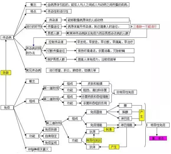2018中考生物知识点结构图分类整理:健康的生活