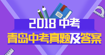 2018年青岛中考真题专题策划