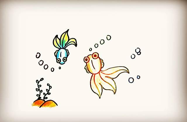 儿童简笔画小金鱼绘画教程 金鱼 11