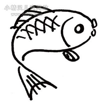 幼儿简笔画步骤图 可爱的小鲤鱼