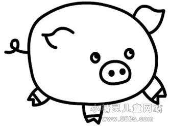 幼儿简笔画步骤图 小猪