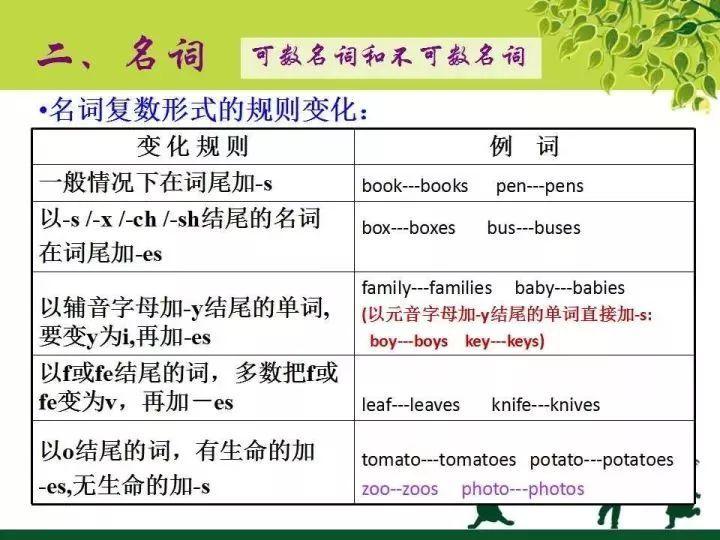 沈阳小学英语语法知识点分类:名词1