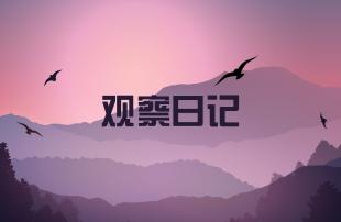 2019年小學生觀察日記精選