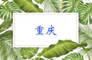 2019重庆市中考政策解读汇总