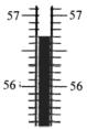 中考物理知识点:温度计的读数