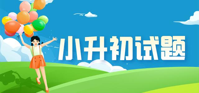 2020小升初�Z�涤⒃��}�R�